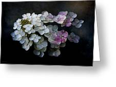 Hydrangea Dreams Greeting Card
