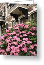 Hydrangeas In Holland Greeting Card