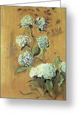 Hydrangeas Greeting Card by Paul Cesar Helleu