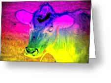 I Think I Am The Most Colorful Cow You Know  Greeting Card