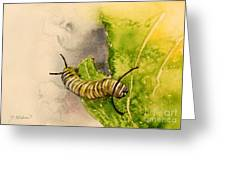 I Am Very Hungry - Monarch Caterpillar Greeting Card
