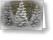 I Dream Of Trees Greeting Card