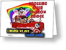 I Helped My Pet Cross Rainbow Bridge Greeting Card by Kathy Tarochione