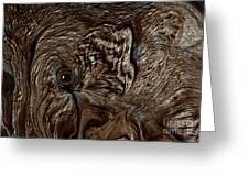 I Love Elephants This Is Sweet Pea Greeting Card