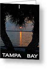 I Love Tampa Bay Greeting Card