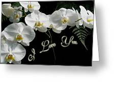 I Love You Greeting - White Moth Orchids Greeting Card