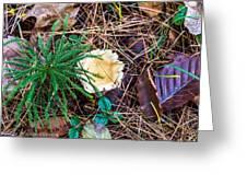 I Think I Am A Fungi Greeting Card