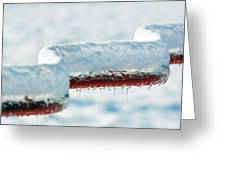 Ice And Snow-5505 Greeting Card