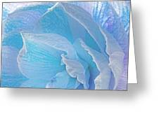 Ice Blue Amaryllis Abstract Greeting Card