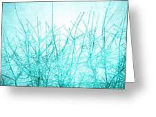 Ice Branches Greeting Card