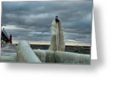 Ice Coat Greeting Card