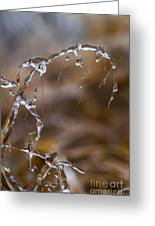 Ice Crystals 1 Greeting Card