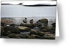 Ice Edges Greeting Card