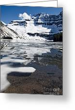 Ice In The Water Greeting Card