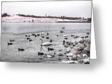 Ice Lake Greeting Card