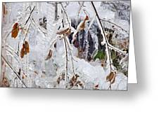 Ice Leaves Greeting Card