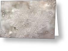 Ice No.004 Greeting Card