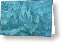 Ice Patterns Formed On Glass Greeting Card