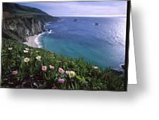 Ice Plants On Big Sur Coast Greeting Card