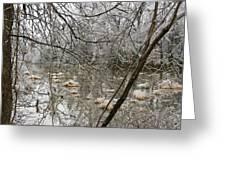 Ice Pond Greeting Card
