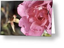 Ice Rose Greeting Card