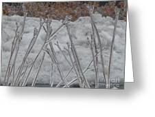 Ice Sticks Greeting Card