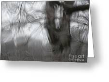 Ice Storm Abstraction Greeting Card