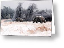 Ice Storm And Hay Bales In The Blue Rdige Mountains Greeting Card