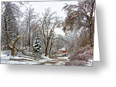Ice Storm...day 6 Greeting Card