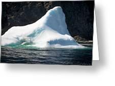 Ice Vi Greeting Card
