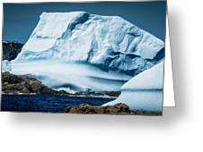 Ice Xxii Greeting Card by David Pinsent