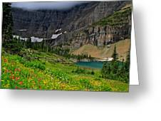 Iceberg Park Tarn Glacier National Park Montana Greeting Card