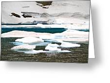 Icebergs In August Glacier International Peace Park Greeting Card