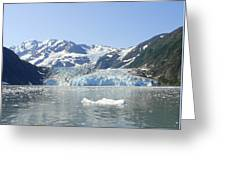 Iceburg Greeting Card