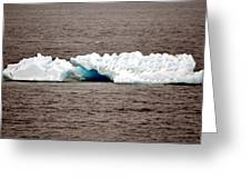 Iceburg With Passenger Greeting Card