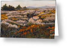 Iceplant And Chaparral Greeting Card