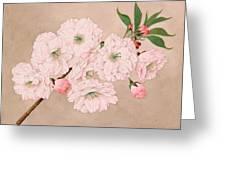 Ichi-yo - Single Leaf - Vintage Japan Watercolor Greeting Card