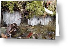 Icicles In The Stream Greeting Card