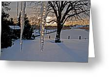 Icicles On The Canal Greeting Card