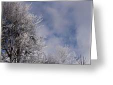 Icy Blues Greeting Card