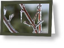 Icy Branch-7463 Greeting Card