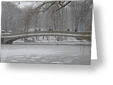 Icy Central Park Greeting Card