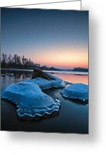 Icy Jellyfish Greeting Card
