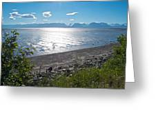 Icy-looking Kachemak Bay In Sunlight From Homer Spit-ak  Greeting Card
