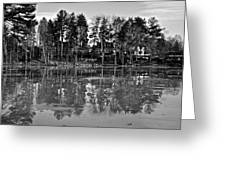 Icy Pond Reflects Greeting Card