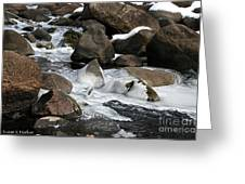 Icy Rapids Greeting Card