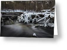Icy Waters Greeting Card
