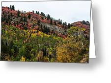 Idaho Colors In Fall Greeting Card