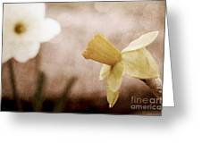 If These Flowers Could Speak  Greeting Card