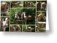 If You Love Belgian Horses Greeting Card